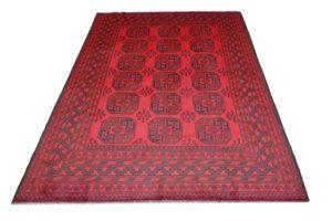 Oriental-RedAfghan02